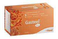 GASTEEL